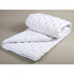 Одеяло Lotus - Нежность м/ф 170х210 двуспальное