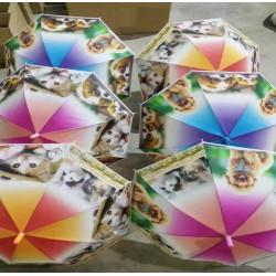 Зонт-трость с рисунком 6 видов полуавтомат CLG17006